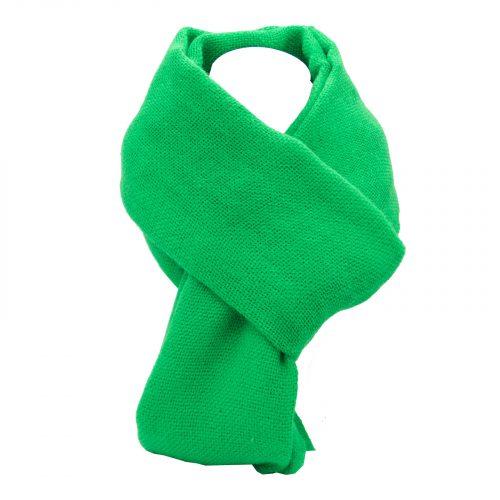 écharpe Vert Fashy pur laine